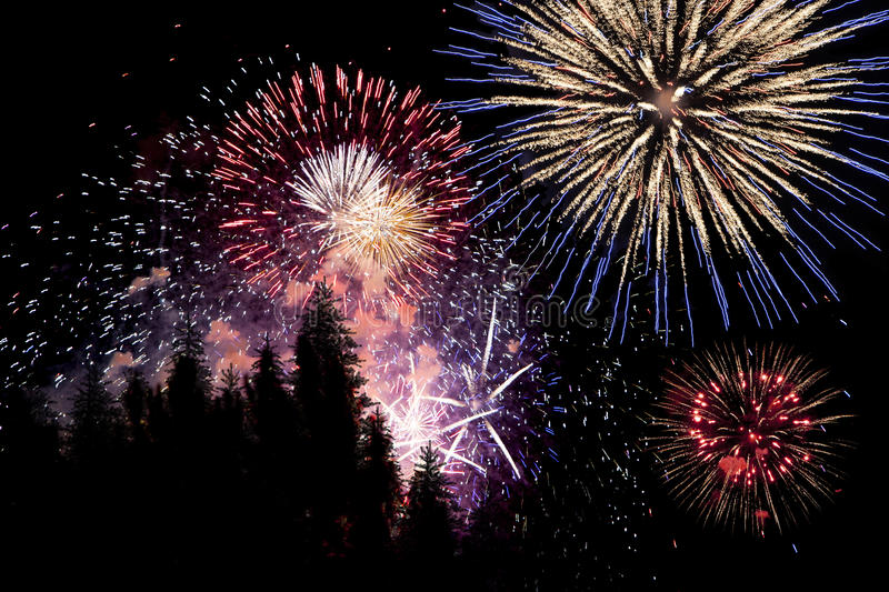 Download Fireworks stock photo. Image of trees, night, july, pine - 42281652