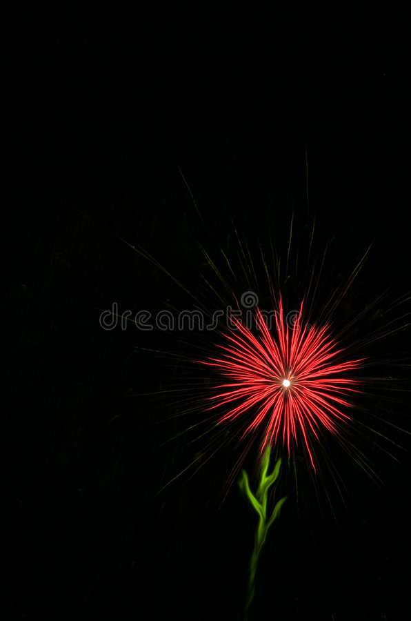 Fireworks - Red Flower. Fireworks - Red Single Flower in the Night Sky royalty free stock image