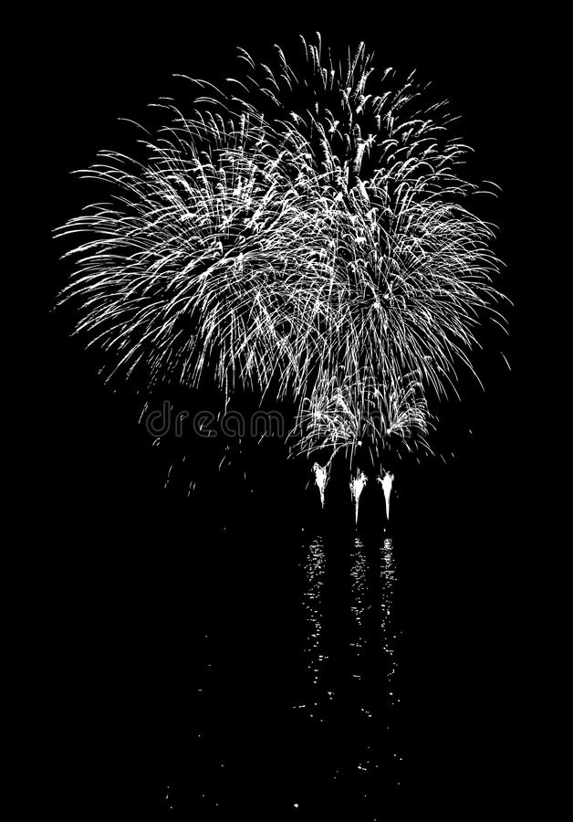 Fireworks with reflection on lake. Vector Fireworks with reflection on lake vector illustration