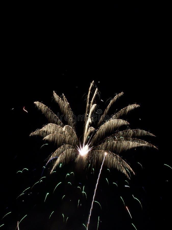 Download Fireworks Show VIII stock image. Image of rockets, celebration - 161725