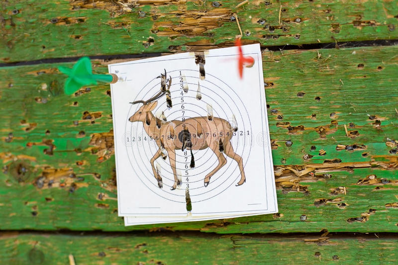 Firing at a target. Target on a blue background. The target punctured with a dart. Accurate shooting on a target. Firing at the purpose royalty free stock image