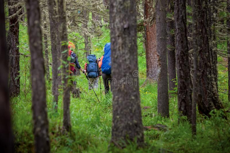Firma młodzi ludzie wycieczkuje w Altai górach zdjęcia royalty free