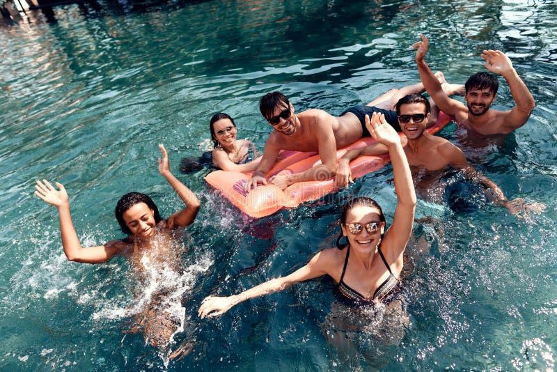 Firma von den glücklichen sorglosen Freunden wenden Zeitschwimmen im Pool auf Schwimmenpool-party-Konzept lizenzfreie stockbilder