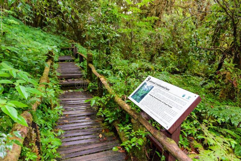Firmi il nessun 9 in Ang Ka Luang Nature Trail immagini stock libere da diritti