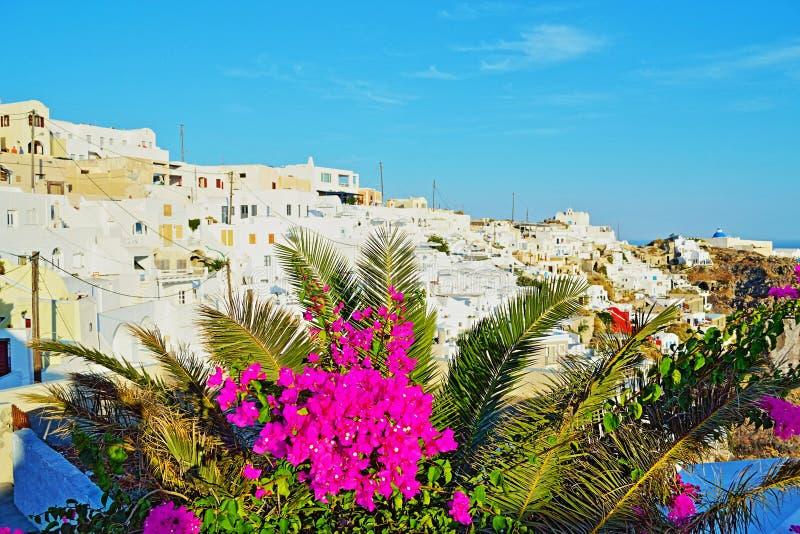 Firostefani村庄视图圣托里尼基克拉泽斯希腊 库存照片