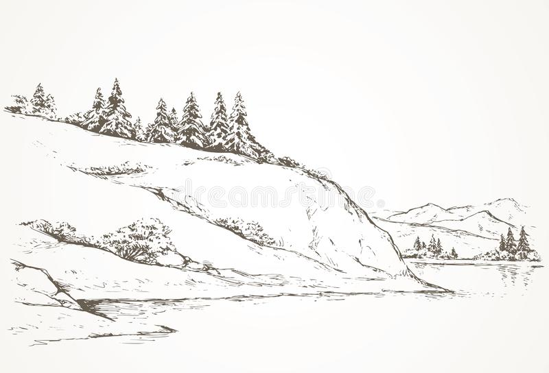 Firs on hill above river. Vector drawing royalty free illustration