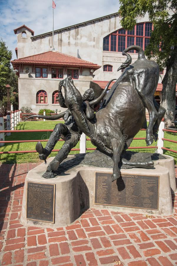 The First Bulldogger cowboy statue in Fort Worth, Texas stock photo