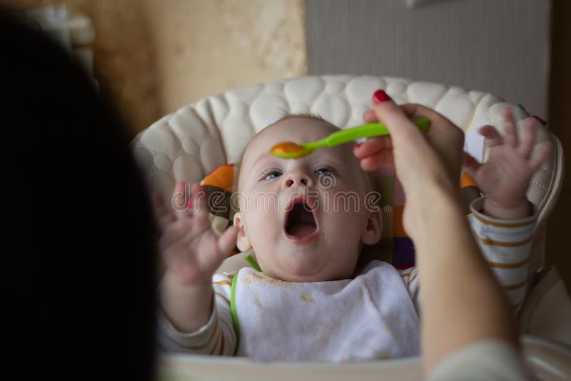 The first feeding of the baby from the spoon. Mom feeds baby homogenized chopped food with a spoon. child care. royalty free stock image
