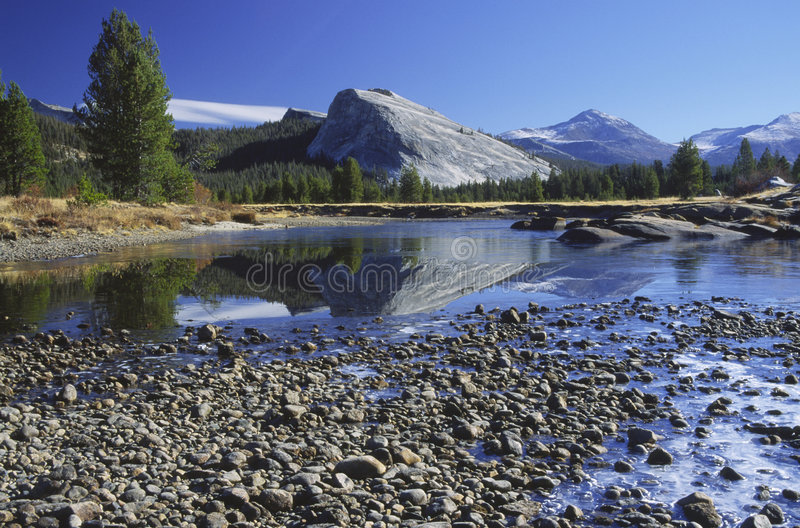 First frost at Tuolumne Meadows in Yosemite royalty free stock image