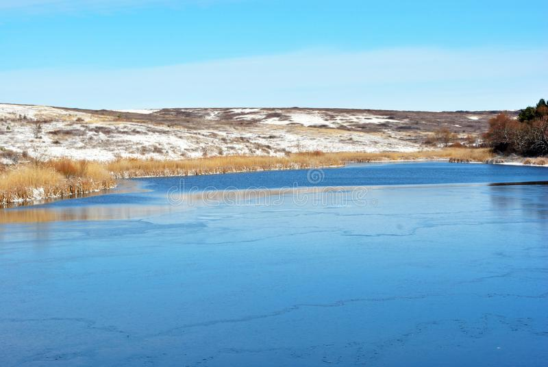 First ice in lake, withered reeds and hills with autumn yellow grass under snow and forest stock images