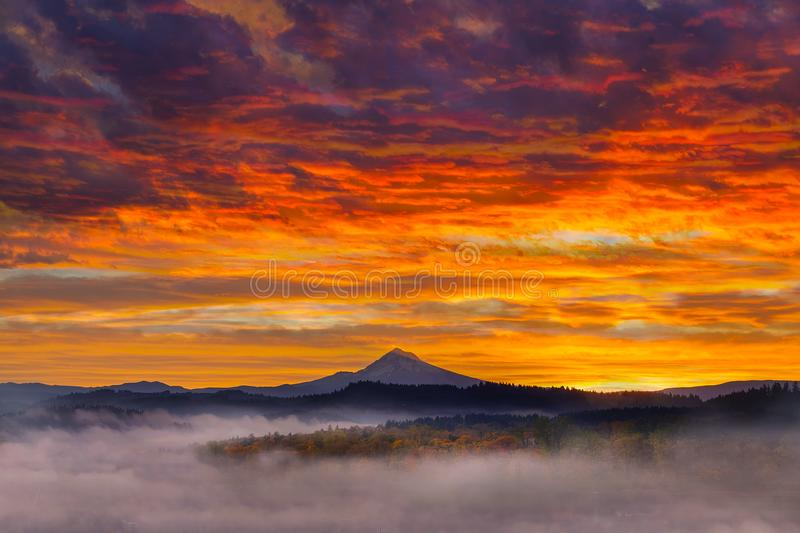 First light on snow covered Mt Hood during Sunrise stock images