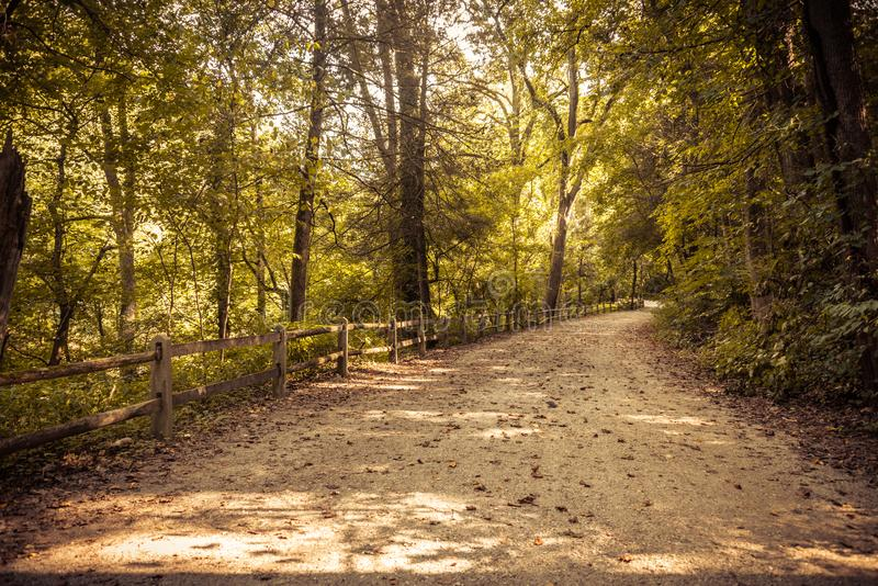 First person view of dirt path in forest. In early autumn. Fence along side with fallen leaves in path stock photography