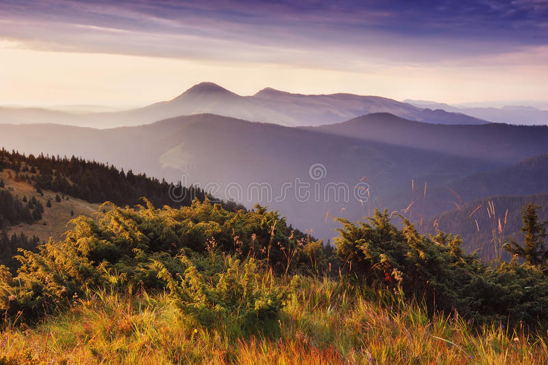 First rays of the rising sun. Pleasant mountain landscape with the first rays of the rising sun stock photography
