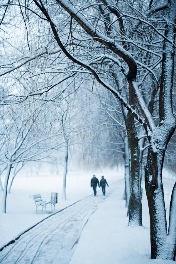 First snow. Snowy winter park scene with benches and couple. First snow. Beautiful snowy winter park scene with benches and couple stock image