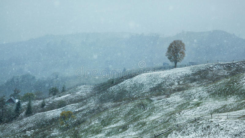 The first snow in the Carpathian mountains. stock images