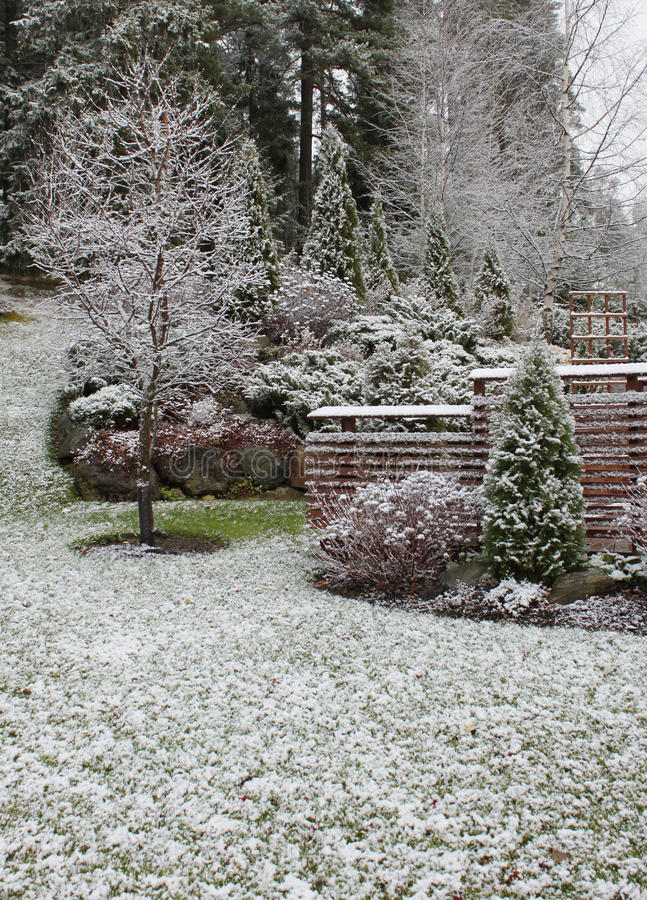 Free First Snow In Garden Stock Photography - 16924092