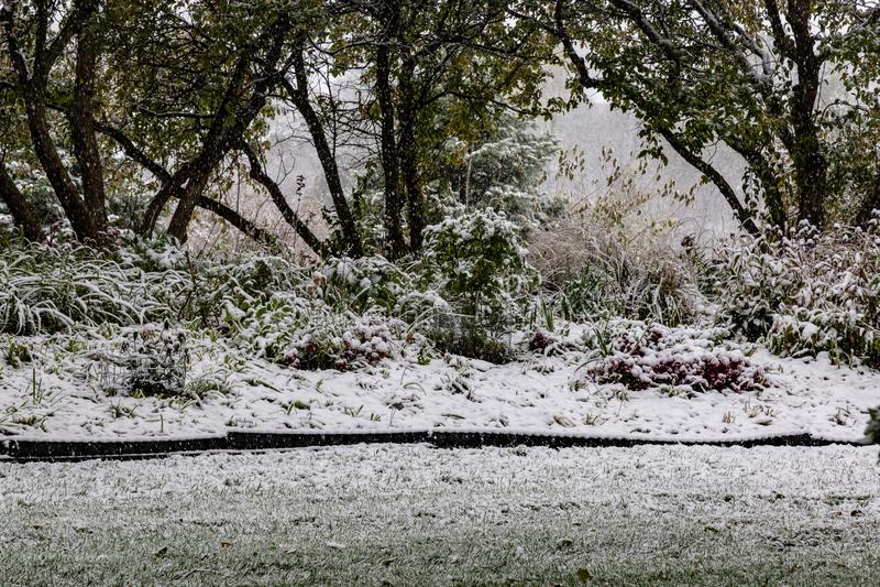 First snow of 2018 winter season in Omaha Nebraska USA. Snow arrived Omaha Nebraska USA today October 14 2018 marking the first snow of the 2018-19 winter season stock photos