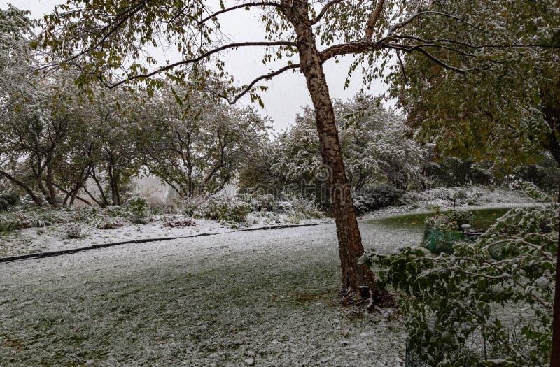 First snow of 2018 winter season in Omaha Nebraska USA. Snow arrived Omaha Nebraska USA today October 14 2018 marking the first snow of the 2018-19 winter season stock photo