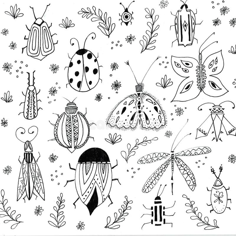 First spring flowers background. Floral elements, insects drawings. Hand drawn botanical illustrations. Garden and stock illustration