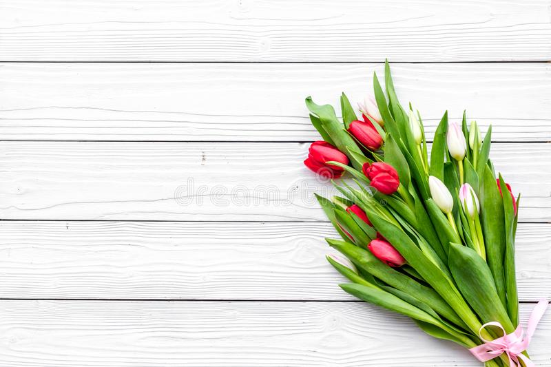 First spring flowers. Bouqet of delicate tulips on white wooden background top view copy space. First spring flowers. Bouqet of delicate tulips on white wooden royalty free stock photo