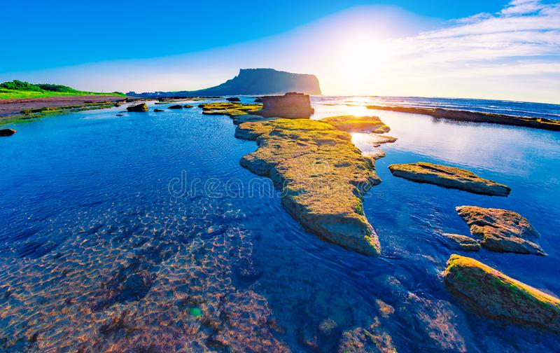 First sunrays at sunrise at Ilchulbong volcano crater with view over ocean and green moss stones , Jeju Island, South Korea royalty free stock image