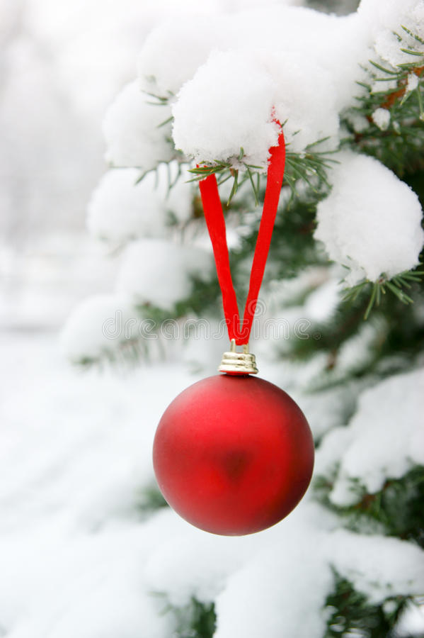 Firtree with christmas ball and snow stock photos