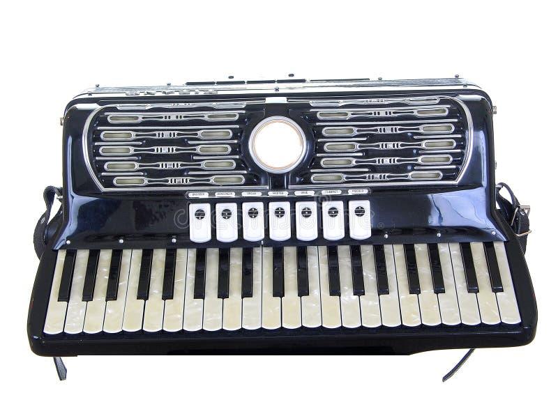 Fisarmonica isolata   immagine stock libera da diritti