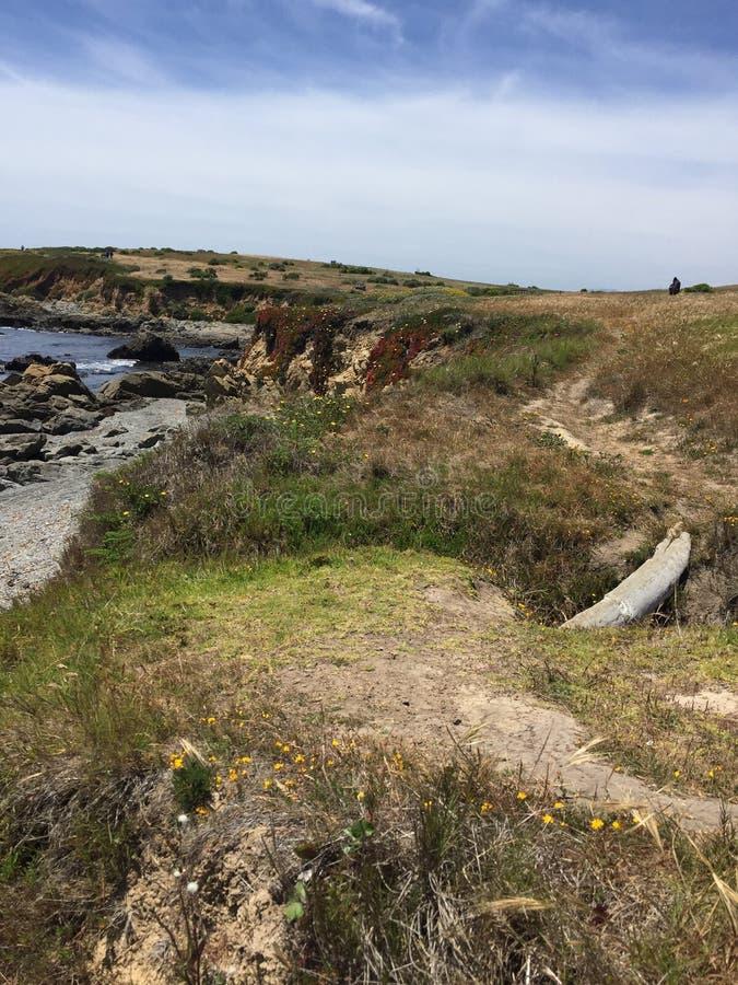 Fiscalini大农场蜜饯沿海视图和足迹 库存图片