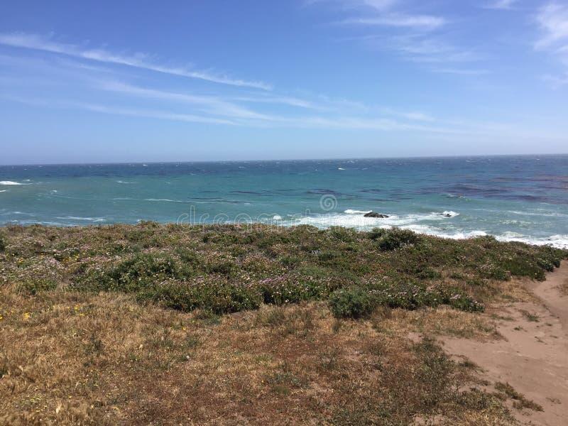 Fiscalini大农场蜜饯沿海视图和足迹 免版税图库摄影