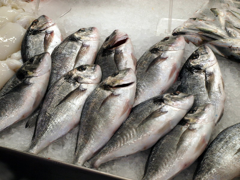 Download Fisch on the market stock image. Image of dietary, fishing - 8396685
