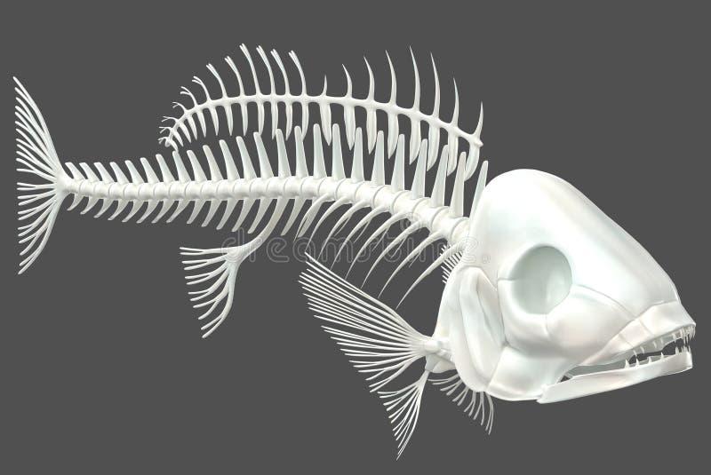 Fisch-Skelett 03 vektor abbildung