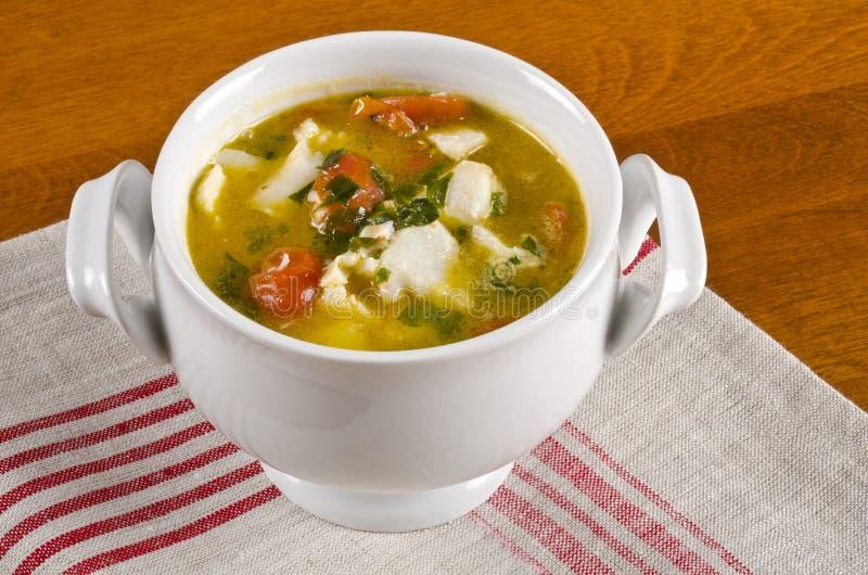 Fisch-Suppe #1 lizenzfreie stockfotos