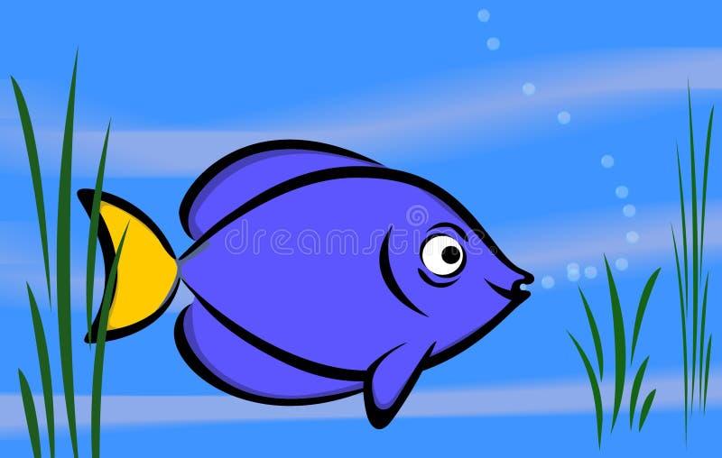 Fischblau lizenzfreie abbildung