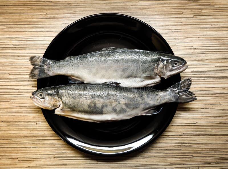 Fische auf der Platte stockfotografie