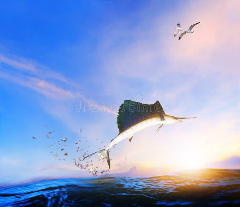 Fische des blauen, schwarzen Speerfisches, die zur mittleren Luft über blauem Meer springen und Meer stockfotografie
