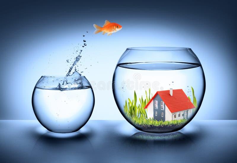 Fische finden haus- Immobilien stock abbildung