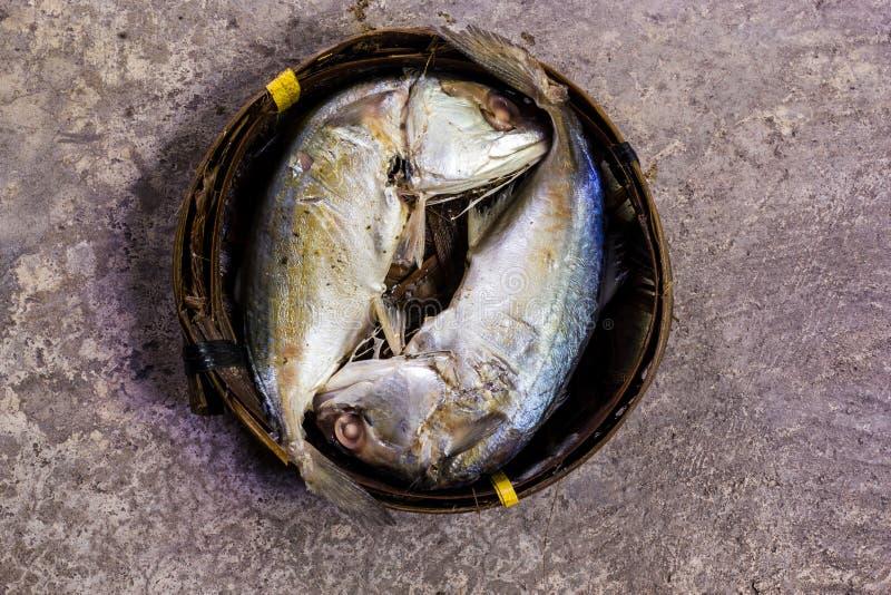Fische gedämpft in einem Korb lizenzfreie stockfotografie
