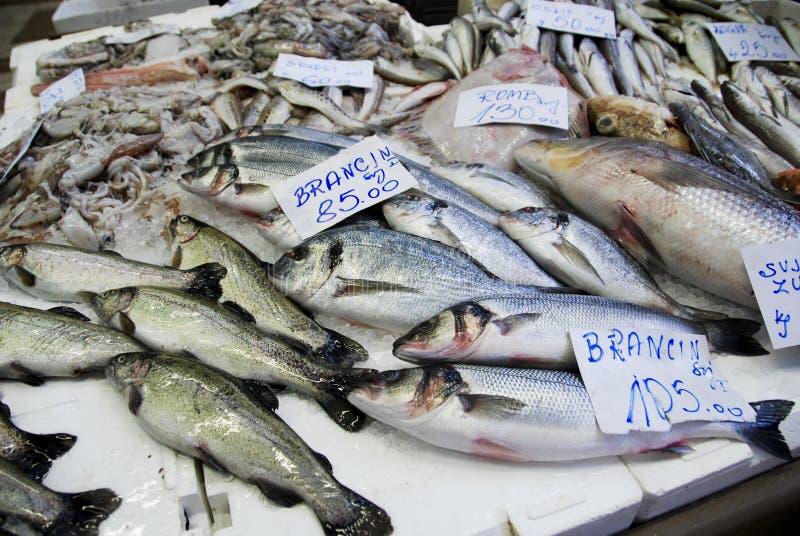 Fische am kroatischen Markt stockbild