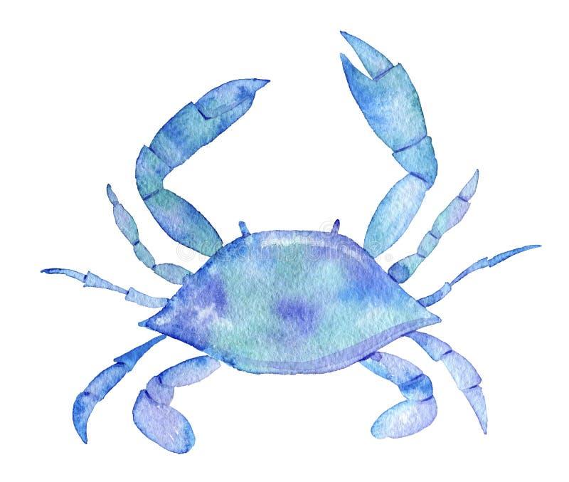 Fische, Meerespflanzen, Luftblasen Aquarellkrabbe lizenzfreie abbildung