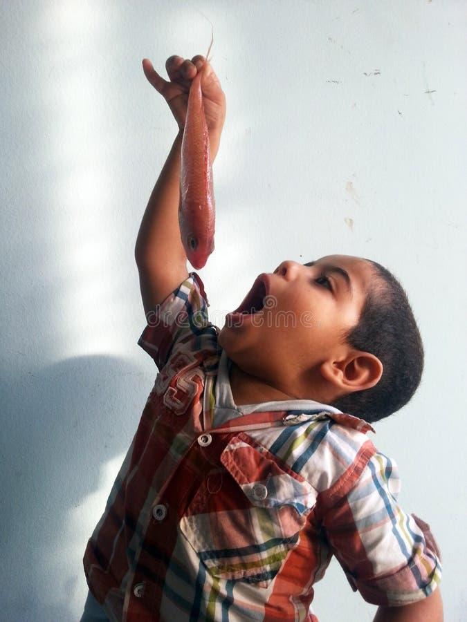 Fische mit Kindern Ägypten Alexandria lizenzfreie stockbilder