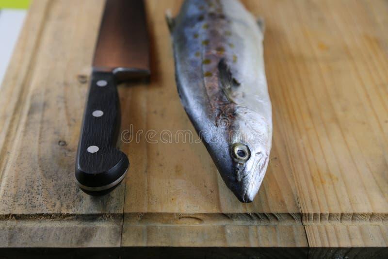 Fische neben Messer auf Schneidebrett lizenzfreies stockfoto