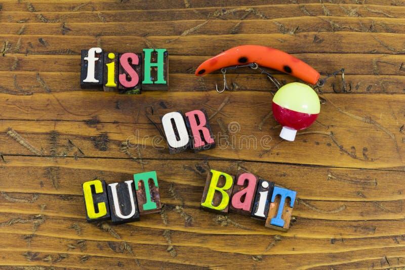 Fische oder geschnittene Köderentscheidungszeit stockbild
