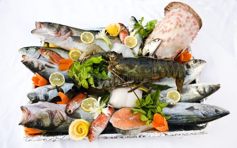 Fische und essbare Meerestiere stockbild