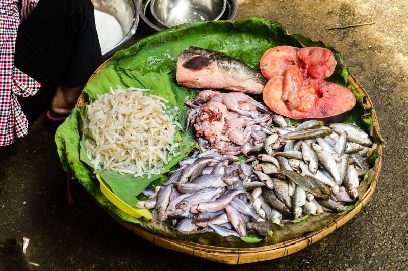 Fische und Frosch stockfoto