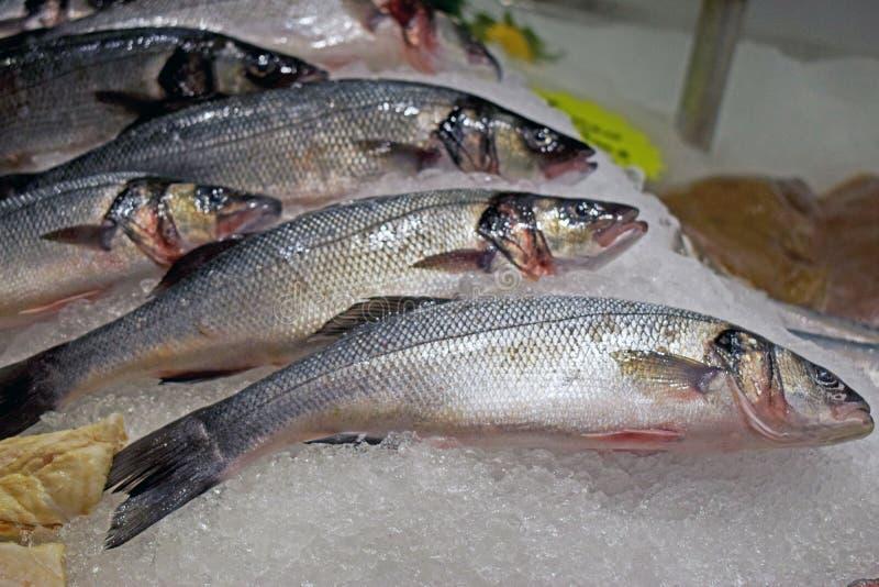 Fische zeigten auf dem Fisch- und Nahrungsmittelmarktstall an stockfotos