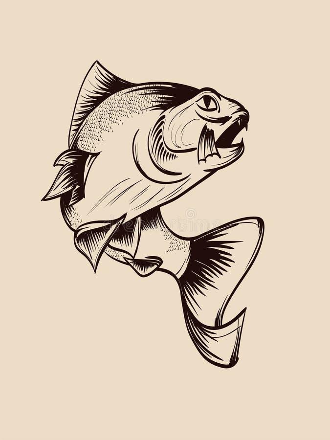 fischen Hand gezeichnete Vektorfische Skizzenfische vektor abbildung