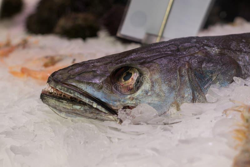 Fischen Sie auf dem Eis, das für Verkauf in einem Markt angeboten wird lizenzfreies stockfoto