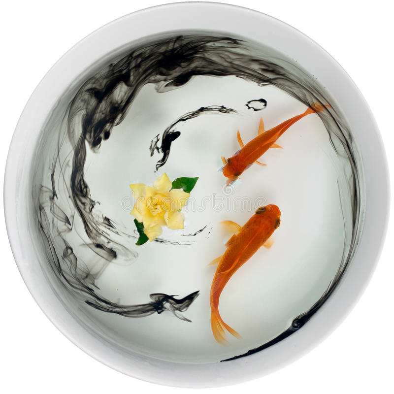 Fischen Sie Blume und schwarze Tinte wie ein chinesischer Anstrich lizenzfreie stockfotos