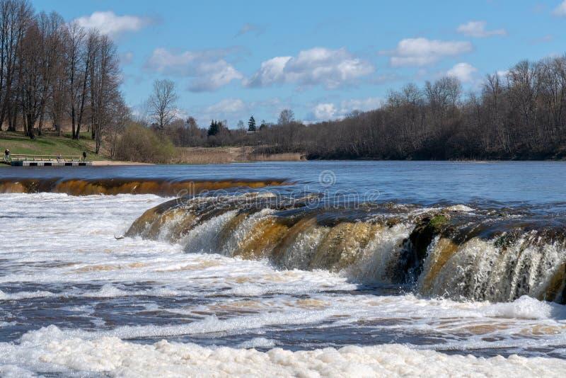 Fischen Sie oben in Wasserfall gegen den Strom springen und das Laichen anstreben stockfotografie