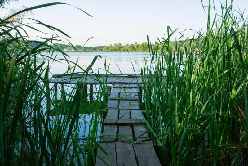 Fischenbrücke in einem Stock am sonnigen Sommertag stockbild